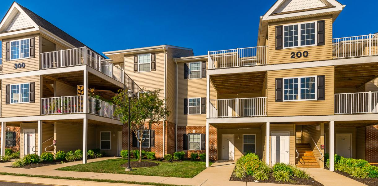 View of Village Park at Paladin | Pettinaro